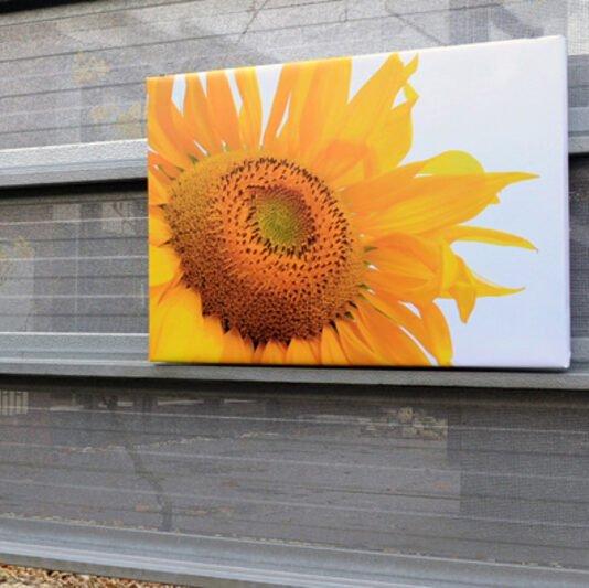 Tuinposter 4cm frame 200x270 cm