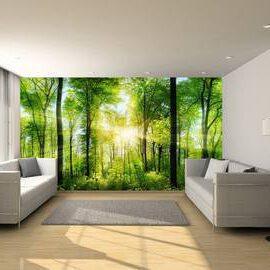 Fotobehang expositie kwaliteit 400x1200 cm